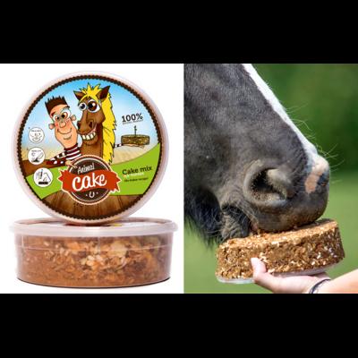 Animal Cake - Gâteau pour cheval