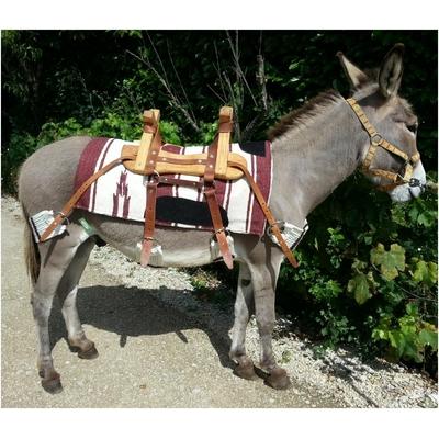 Bât pour âne