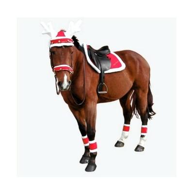 Articles de Noël pour cheval, cavalier et chien