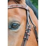 Bridon Botticelli cuir softy TdeT