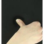 Amortisseur Pro Series Honeycomb à mémoire de forme2