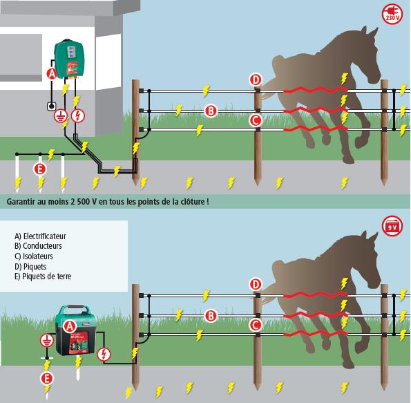 Fonctionnement d'une clôture électrique pour chevaux