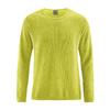 pullover coton bio homme LZ368_vert_pomme