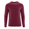 pull bio homme LZ301_a_rioja