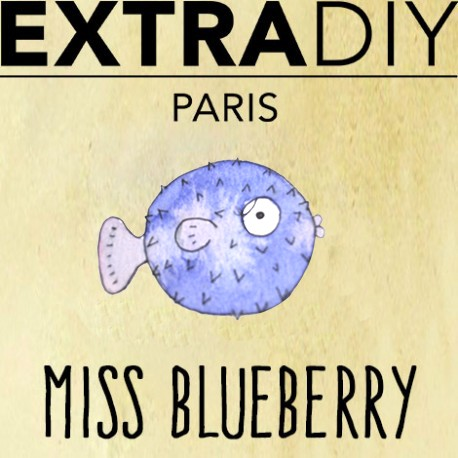 miss-blueberry-by-extradiy