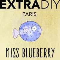 ARÔME MISS BLUEBERRY