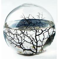 Ecosphère ronde