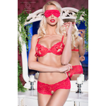 CR4193-red