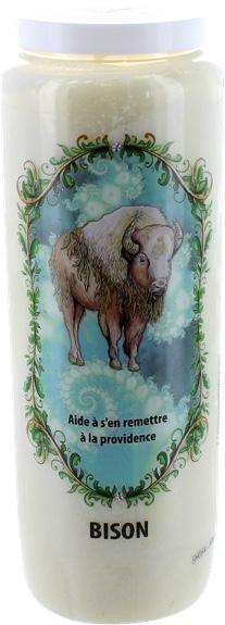 Neuvaine Animaux Totem Bison
