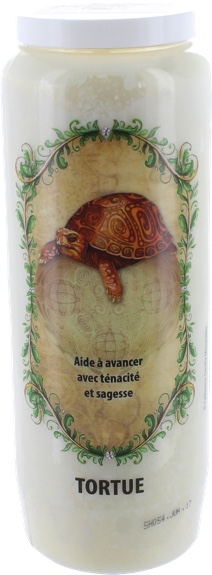 61810-animaux-totem-tortue
