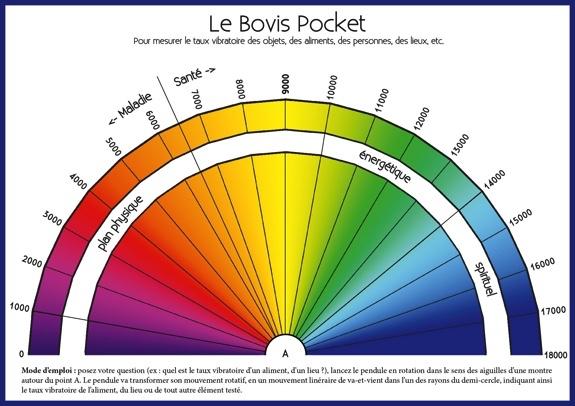 63769-le-bovis