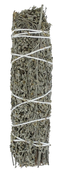 Sauge Blue Shasta Green Tree Bâton Purificateur