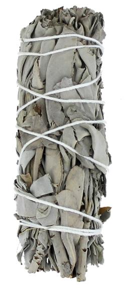 Sauge Blanche Green Tree Bâton Purificateur Petit modèle