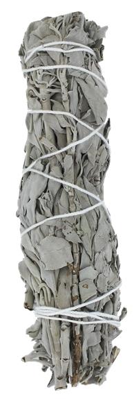 Sauge Blanche Green Tree Bâton Purificateur Moyen modèle