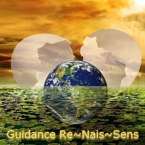 Guidance Re~Nais~Sens