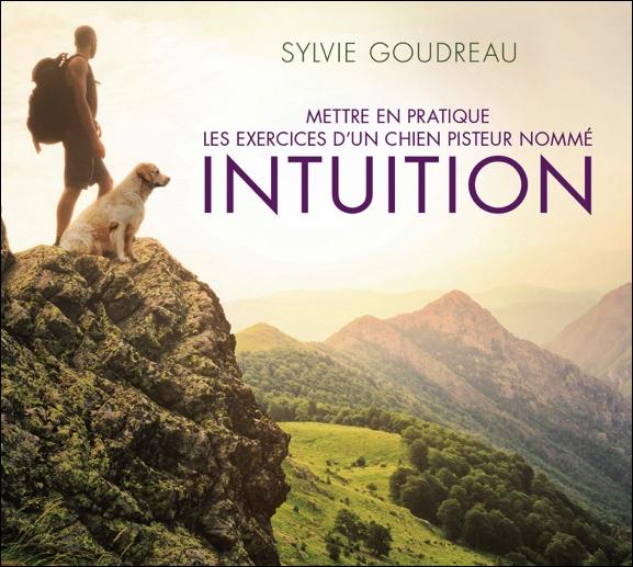 55912-mettre-en-pratique-les-exercices-d-un-chien-pisteur-nomme-intuition