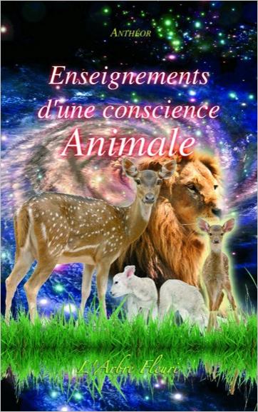33211-Enseignements d'une conscience animale