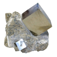 Cube Pyrite sur Gangue - GM