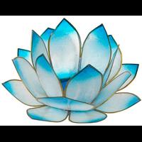 Lotus Levée du Soleil - Turquoise