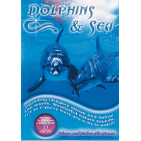 Dolphins And Sea - Medwyn Goodall
