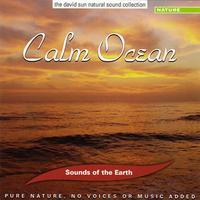Calm Ocean - Davis Sun