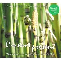 L'instant Présent : Nouvelle Edition - Fabrice Tonnellier