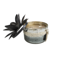 Bougie Verre 2 Mèches Coloris Noir - Senteur Sauge Blanche