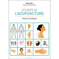 Les Mots de l'Acupuncture - Théorie et Pratique - Evelyne Malnic