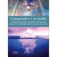 Comprendre l'Invisible - Stéphane Vaillant