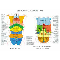 Points d'Acupuncture