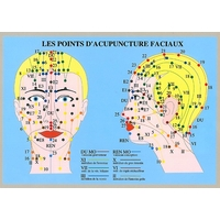 Points Acupuncture Faciaux