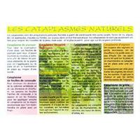 Cataplasmes Naturels