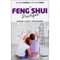 Le Feng Shui Pratique -  Anthony Blégent & Anthony Faure