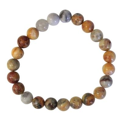 Bracelet Perles Rondes Agate Crazy Lace - 8 mm (Lot de 3)