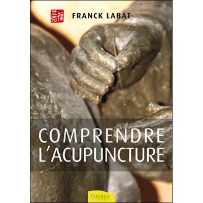 Comprendre l'Acupuncture - Franck Labat