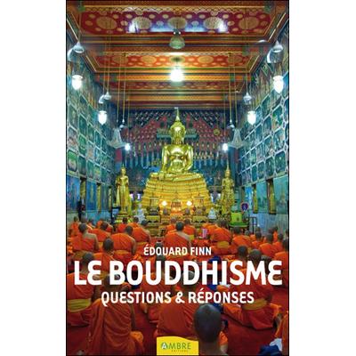 Le Bouddhisme - Questions & Réponses - Edouard Finn