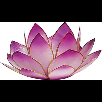 Lotus Levée du Soleil - Lavande