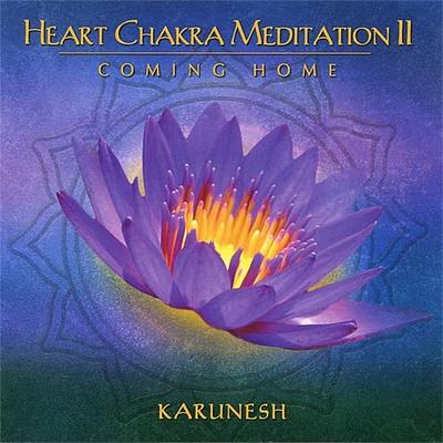 Heart Chakra Meditation 2 - Karunesh