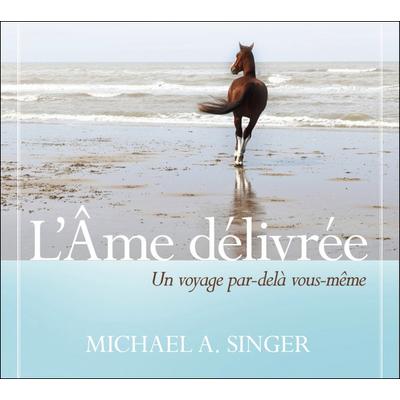 L'Âme Délivrée - Livre Audio - Michael A. Singer
