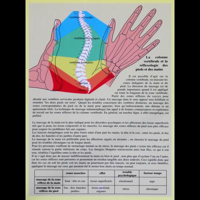 4165-1-zones-reflexes-main-et-pied