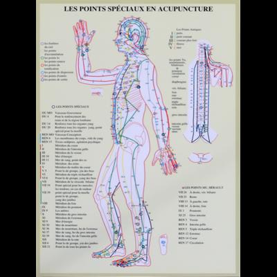 Points Spéciaux en Acupuncture