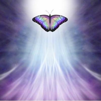 Se Libérer pour se Transformer et Renaître à Soi