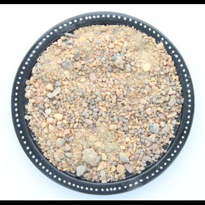 70113-2-Encens résine en grains benjoin du siam
