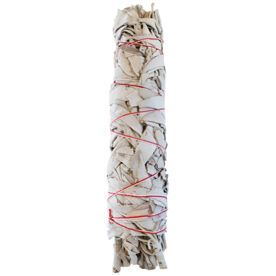 Bâton Purificateur Sauge Blanche - Salvia Apiana