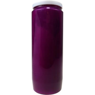 Lampe de Sanctuaire Violette - Carton de 6