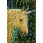 31160-1-licornes-magiques-cartes-oracle