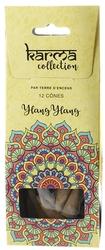 65124-encens-cones-ylang-ylang