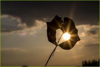 sun-622740_6402