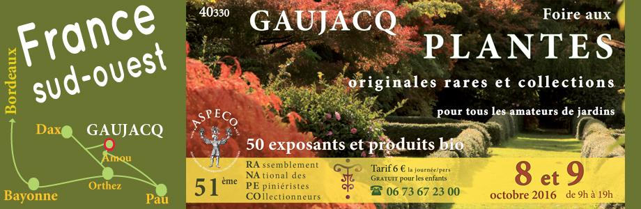 RANAPECO à Gaujacq