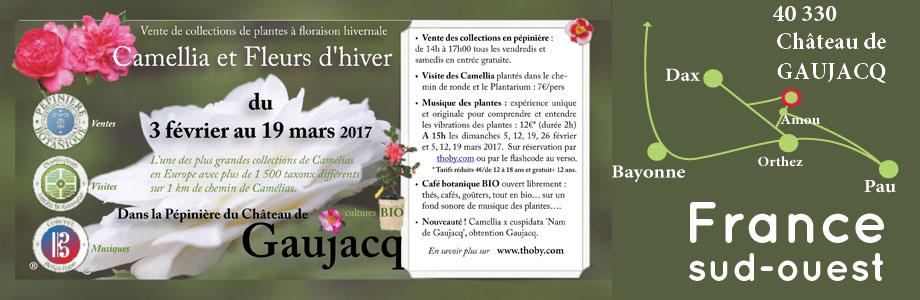 Expos des Camélias et Fleurs d'hiver